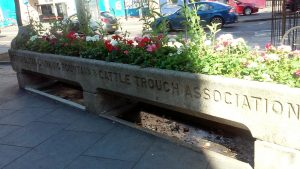 Trough in Hackney near The Corner restaurant by Heart of Pixie
