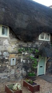Thatched Roof in Somerset by Heart of Pixie